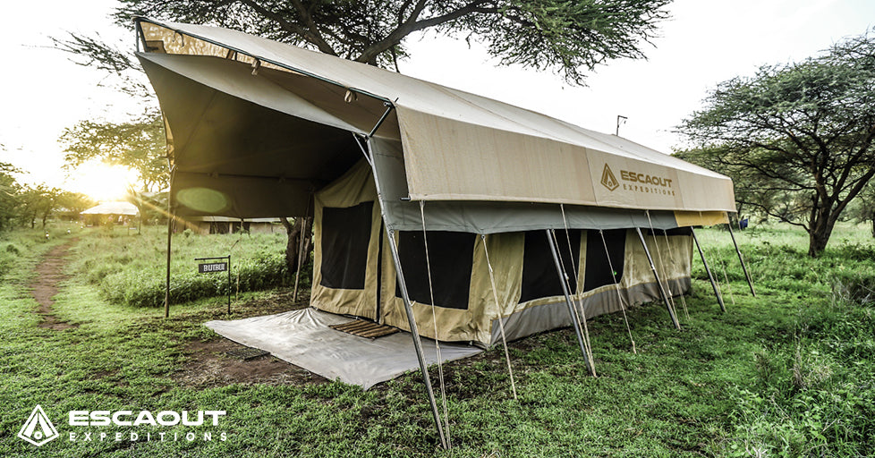 Safari Masai Tarangire Ngorongoro Serengeti Kilimanjaro 2019 ESCAOUT Expeditions Premium
