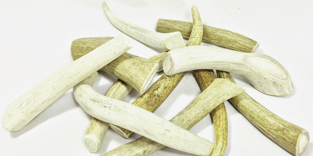 All Natural Deer Antler Dog Chews