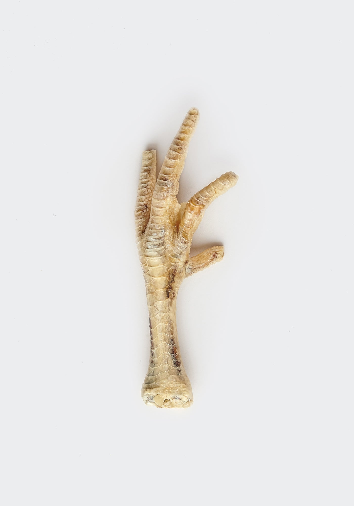 Chicken foot (single)