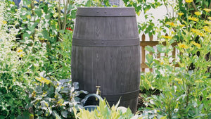 Barrique Water Butt – 250 Litres - Freeflush Rainwater Harvesting Ltd.