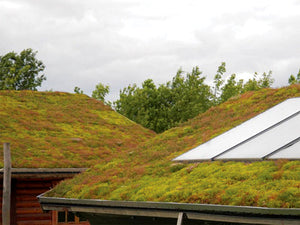Green Roof sedum tray - pre planted option - Freeflush Rainwater Harvesting Ltd.