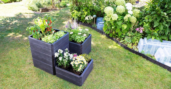 Ergo Quadro Raised Bed Planters