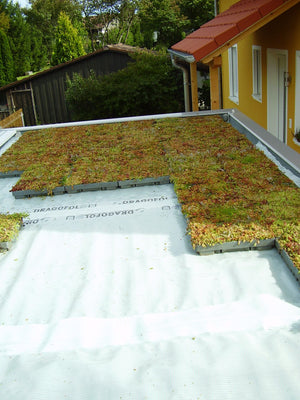 Prestige Water Green Roof sedum tray - pre planted option - Freeflush Rainwater Harvesting Ltd.