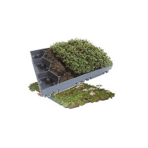 Green Roof sedum tray - pre planted option