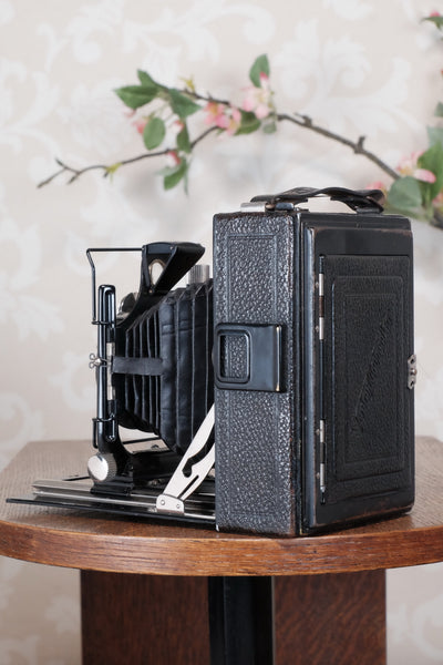 1931 Voigtlander 9x12 Camera with 6x9 120 roll film back. Freshly serviced, CLA'd!
