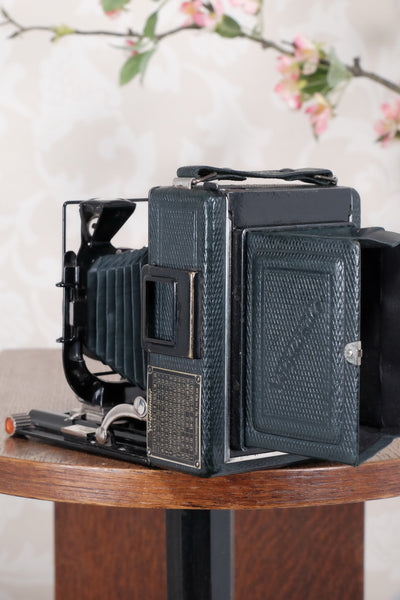 1934 Green Voigtlander Bergheil Camera with Heliar lens and roll film back! Freshly serviced, CLA'd! - Voigtlander- Petrakla Classic Cameras