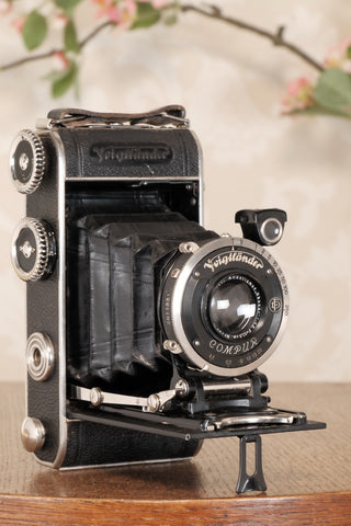 1934 Voigtlander Inos II 6x9 Folder, CLA'd, Freshly Serviced!