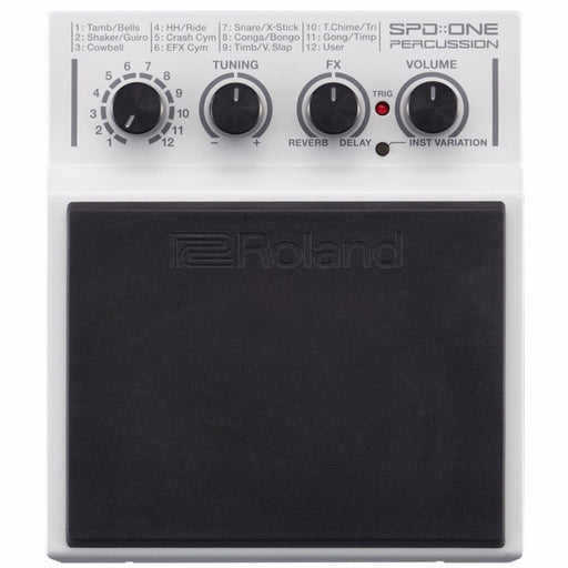 Roland SPD-1P Percussion Pad - Music Junkie