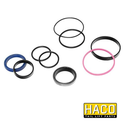 Sealkit HACO to Suit Bar Cargolift 101121348 , Haco Tail Lift Parts - Bar Cargolift, Nationwide Trailer Parts Ltd
