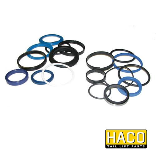 Sealkit HACO to Suit Bar Cargolift 101121350 , Haco Tail Lift Parts - Bar Cargolift, Nationwide Trailer Parts Ltd
