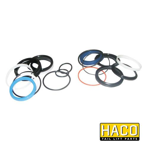 Sealkit HACO to Suit Bar Cargolift 101116619 , Haco Tail Lift Parts - Bar Cargolift, Nationwide Trailer Parts Ltd