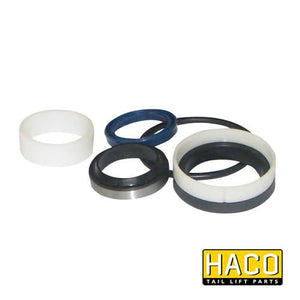 Ram Sealkit HACO to Suit DSE050.30.B , Haco Tail Lift Parts - HACO, Nationwide Trailer Parts Ltd