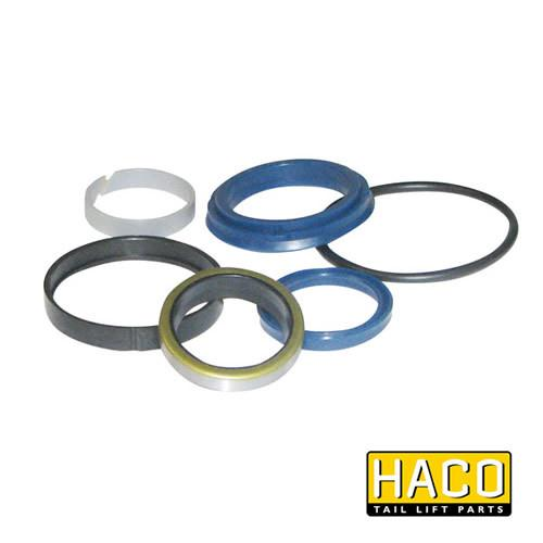 Ram Sealkit HACO to Suit DSE060.35.B , Haco Tail Lift Parts - HACO, Nationwide Trailer Parts Ltd