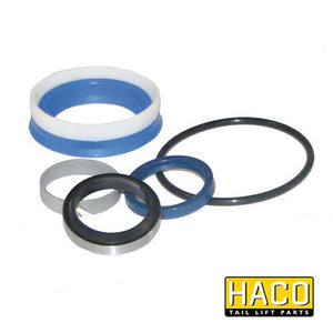 Ram Sealkit HACO to Suit DSE070.35.B , Haco Tail Lift Parts - HACO, Nationwide Trailer Parts Ltd