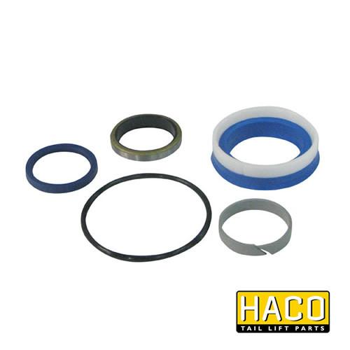 Ram Sealkit HACO to Suit DSE070.40.B , Haco Tail Lift Parts - HACO, Nationwide Trailer Parts Ltd