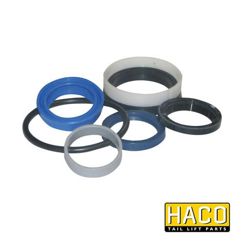 Ram Sealkit HACO to Suit DSE050.30 , Haco Tail Lift Parts - HACO, Nationwide Trailer Parts Ltd