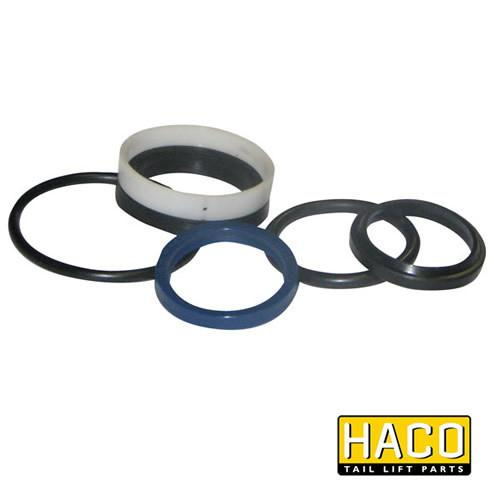 Ram Sealkit HACO to Suit DSE050.35 , Haco Tail Lift Parts - HACO, Nationwide Trailer Parts Ltd