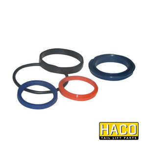 Sealkit Ø40/060mm SA HACO to suit DSE060.40 , Haco Tail Lift Parts - HACO, Nationwide Trailer Parts Ltd