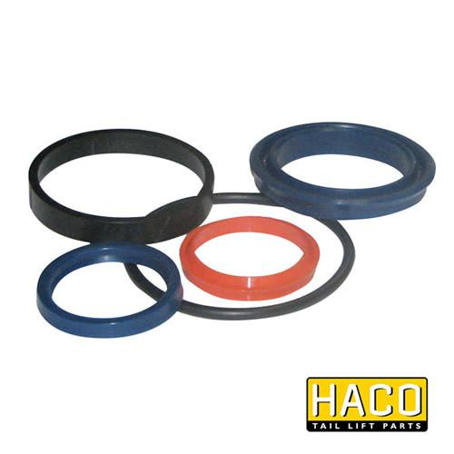 Ram Sealkit HACO to Suit DSE060.35 , Haco Tail Lift Parts - Dhollandia, Nationwide Trailer Parts Ltd