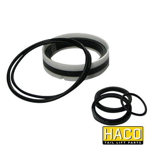 Ram Sealkit HACO to Suit DSE100.40 , Haco Tail Lift Parts - HACO, Nationwide Trailer Parts Ltd