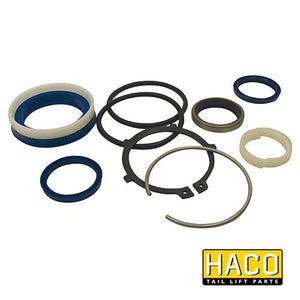 Sealkit Ø40/080mm SA HACO to suit DSE080.40.C , Haco Tail Lift Parts - HACO, Nationwide Trailer Parts Ltd