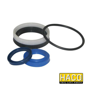 Ram Sealkit HACO to Suit DSE060.30 , Haco Tail Lift Parts - HACO, Nationwide Trailer Parts Ltd