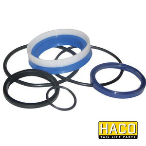 Ram Sealkit HACO to Suit DSE080.55 , Haco Tail Lift Parts - HACO, Nationwide Trailer Parts Ltd