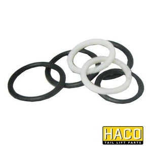 Sealkit HACO to Suit DSV040 , Haco Tail Lift Parts - HACO, Nationwide Trailer Parts Ltd