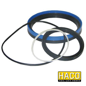 Sealkit GS HACO to Suit DSGS140.80 , Haco Tail Lift Parts - HACO, Nationwide Trailer Parts Ltd