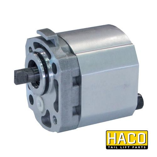 Pump W3B1/R-type HACO to suit Bar Cargo 101118421