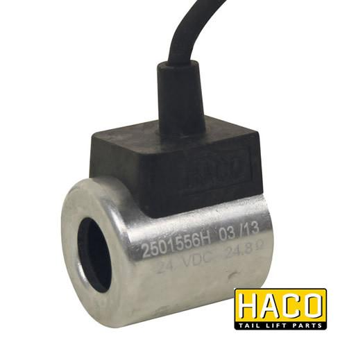 24v Coil HACO to suit Bar Cargo 101124861
