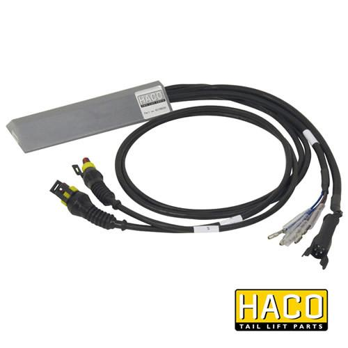 Foot control electronic BG HACO to suit Bar Cargo 101131115