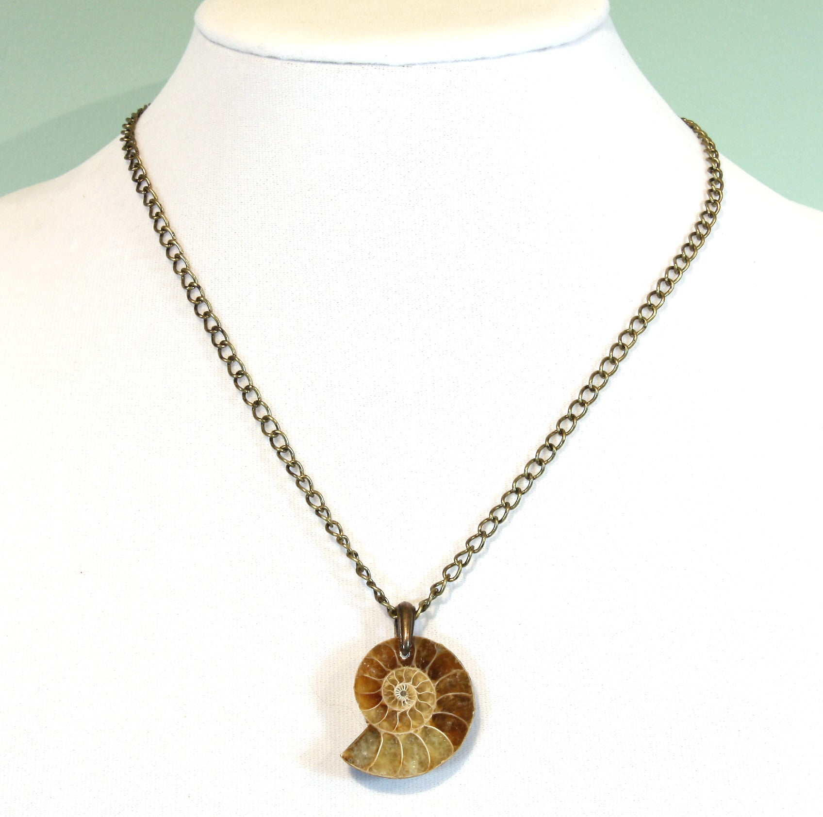 """Fossilized"" Natural Ammonite Fossil Necklace on 18 inch brass chain"