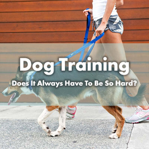 Dog Training - Does It Always Have To Be So Hard?