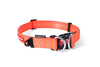 EzyDog Double Up Collar | Accessories - 3