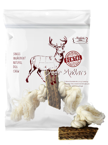 Absolute Bites Deer Antlers Dental Chew With Rope | Treats