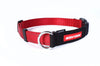 EzyDog Checkmate Collar | Accessories - 4