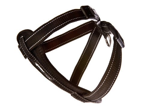 EzyDog Chest Plate Reflective Harness | Accessories - 1