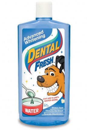 Dental Fresh Advanced Whitening – 17oz | Grooming