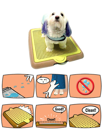 Yogi Pet Pee Tray | Toilet Needs - 1