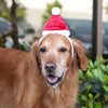 Zippypaws Christmas Specials -  Santa Hat | Fashion - 2