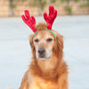 Zippypaws Christmas Specials -  LED Antlers | Fashion - 2