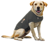 Thundershirt For Dogs | Training - 2