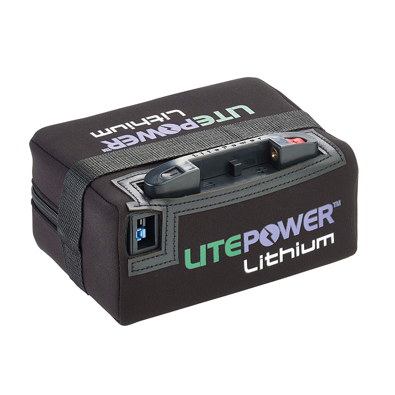 standard range lithium battery charger litepower lithium. Black Bedroom Furniture Sets. Home Design Ideas