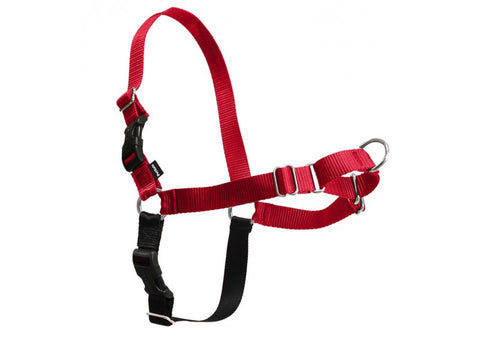 PetSafe - Easy Walk Harness - Various Colors & Sizes