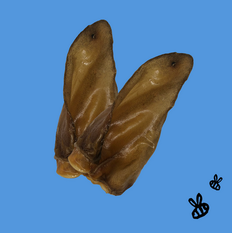 Honey I'm Home - Honey Coated Buffalo Ear