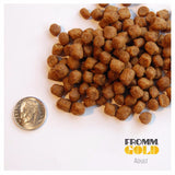 Fromm - Gold Adult - Dry Cat Food -  Various Sizes