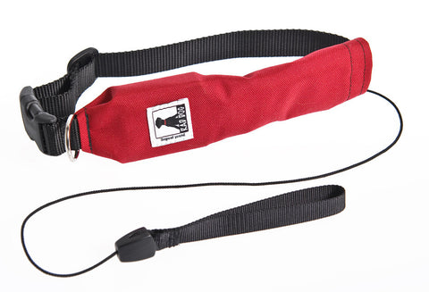 Rad Dog - Release N Run Leash & Collar - Various Sizes and Colors