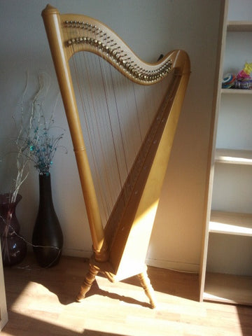 Harp - The ancient Indian music instrument