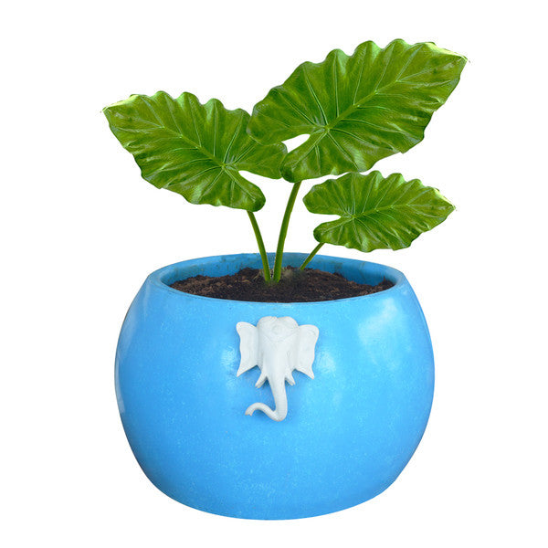 Yaanai Plant Container | Decorative garden planter pot